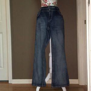 Ariya Jeans Plus Size Jeans | 20